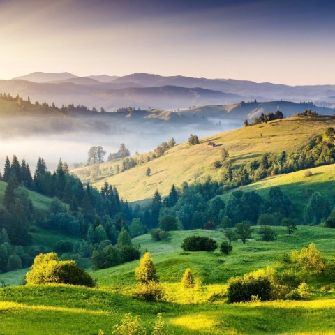 Picture of rolling countryside hills with some early morning fog