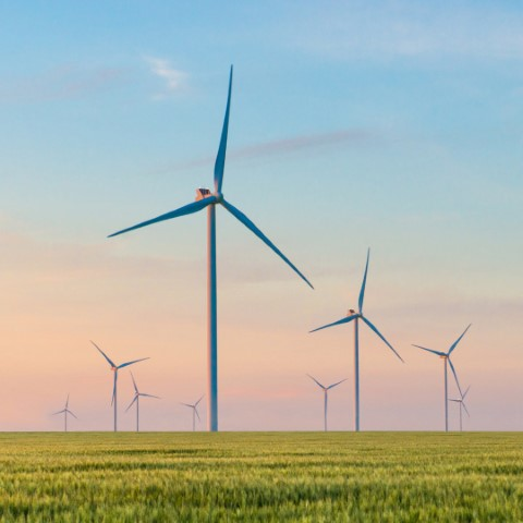 Picture of wind turbines in countryside field at sunset